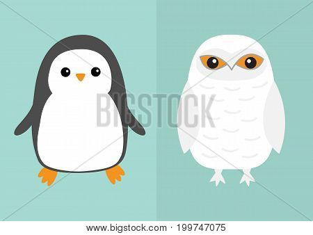 White Snowy owl Penguin bird icon set. Sitting bird with wings. Snow barn. Yellow eyes. Arctic Polar animal collection. Baby education. Flat design. Isolated. Blue sky winter background. Vector