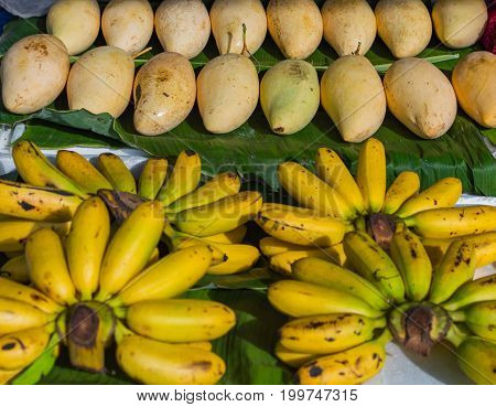 Cluster Banana And Mango Fruit On Sales In The Market