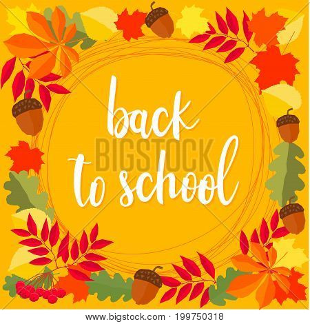 Back To School. Hand Drawn Lettering And Autumn Time Leaves