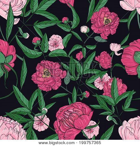 Beautiful peonies seamless pattern. Hand drawn blossom flowers, buds and leaves. Colorful vector illustration