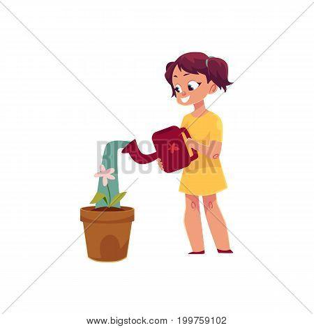 Little girl watering houseplant, pot flower, doing housework, cartoon vector illustration isolated on white background. Cartoon little girl watering houseplant, flower, helping with homework