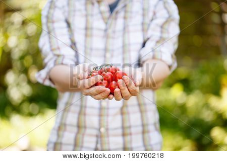 Photo of young guy with cherry tomatoes in hands