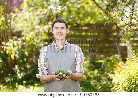 Photo of guy holding cucumbers in palms of summer, afternoon