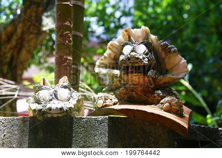 Okinawa shell Shisa statues guarding the wall with blur background of shade of trees. This photo took from Okinawa in July 2017.