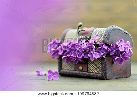 Mothers Day lilac flowers on wooden background