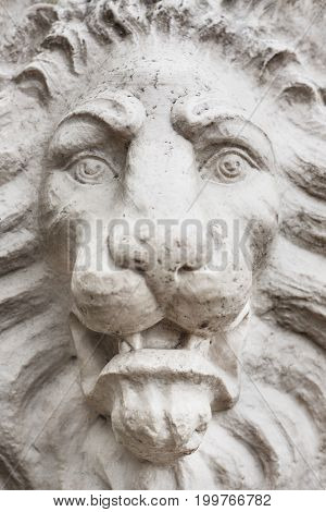 Stone lion face close up. Angry lion sculpture.