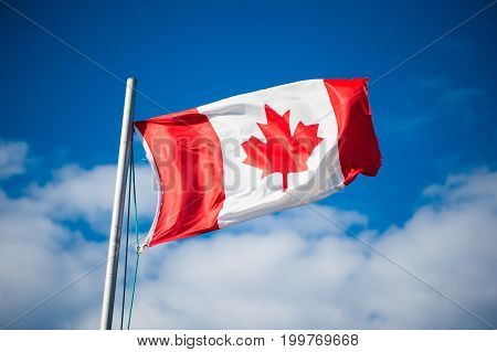 Canadian flag flying in the breeze with a blue sky in the background