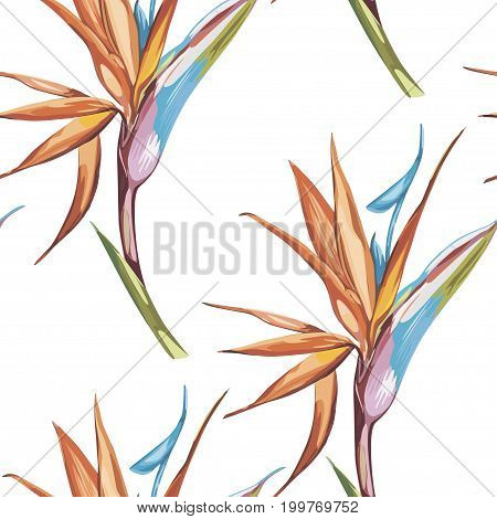 Elegance seamless pattern in vintage style with Strelitzia flowers.