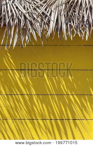A fragment of the wall of a yellow wooden house with thatched roof is removed in sunny weather in a hot country
