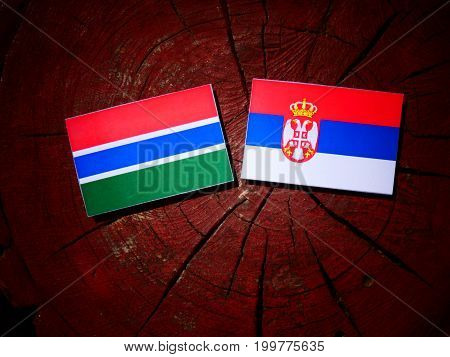Gambian Flag With Serbian Flag On A Tree Stump Isolated
