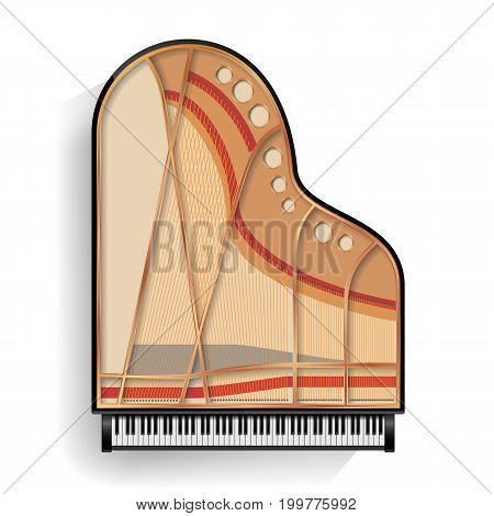Grand Piano Opened Vector. Realistic Black Grand Piano Top View. Isolated Illustration. Musical Instrument.