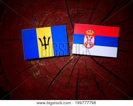 Barbados Flag With Serbian Flag On A Tree Stump Isolated