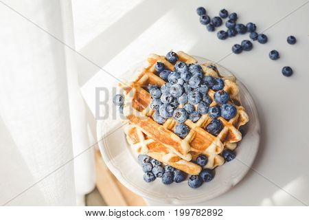 Plate Of Tasty Fresh Waffles With Blueberries Under Sun Rays