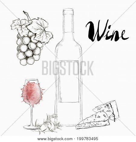 Hand Drawn Illustration Wine Glass and Bottle With a bunch of grapes and cheese