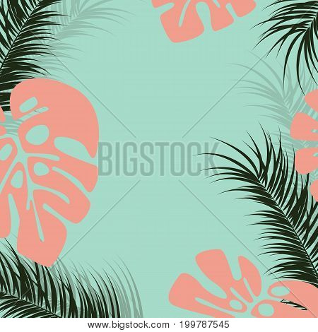 Tropical design with monstera palm leaves and plants on green background vector illustration