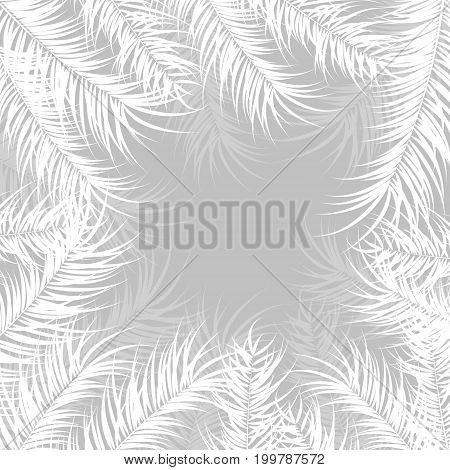 Tropical design with monstera palm leaves and plants on gray background vector illustration