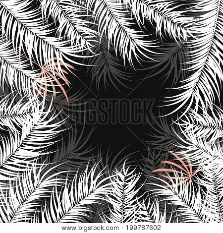 Tropical design with white palm leaves and plants on dark background vector illustration