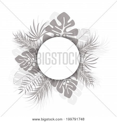 Tropical design with black palm leaves and plants on white background with place for text vector illustration