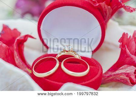 Wedding Rings In A Jewelery Case