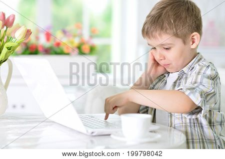 Portrait of a cute little boy using modern laptop