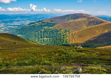Borzhava Ridge In Carpathian Mountains In August