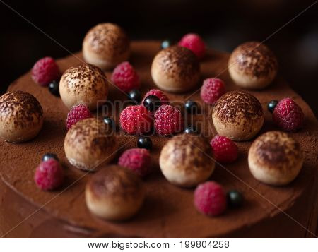 Close-up of an appetizing chocolate cake, sprinkled with cocoa powder and decorated with succulent bright raspberries and sappy black currants on a dark blurred background.