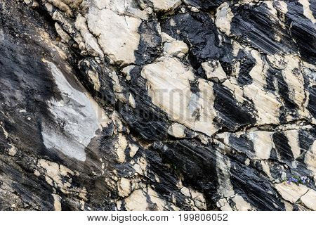 Black and white rocky structure, background, texture