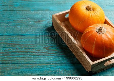 Two pumpkins in wooden box