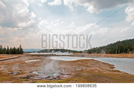 Young Hopeful Geyser next to Firehole Lake in the Lower Geyser Basin in Yellowstone National Park in Wyoming USA