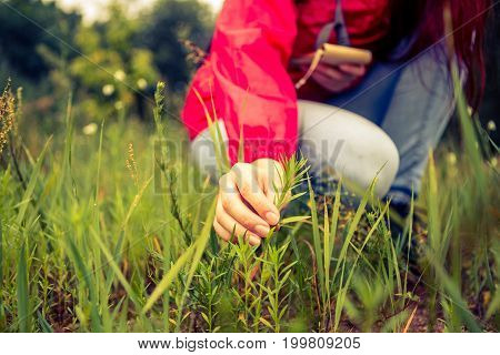 Photo of woman touching plant in woods by day