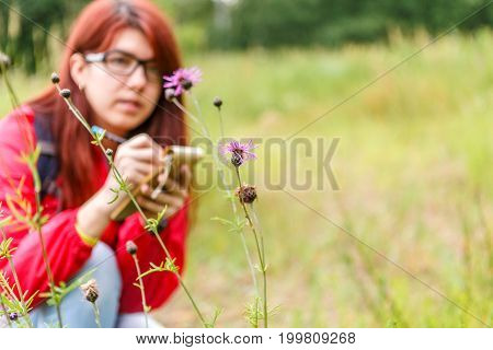 Photo of thistle against background of botanist girl in woods by day
