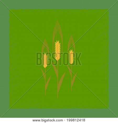 flat shading style illustration of natural triticum