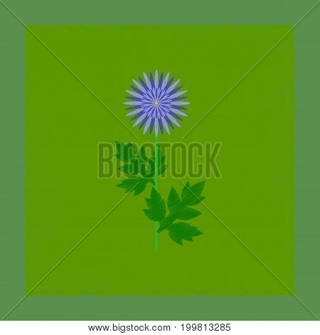 flat shading style illustration of flower aster