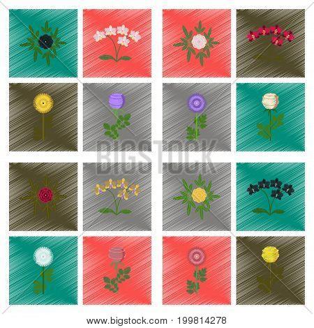 assembly flat shading style illustration of plant flower paeonia chrysanthemum orhidaceae rosa