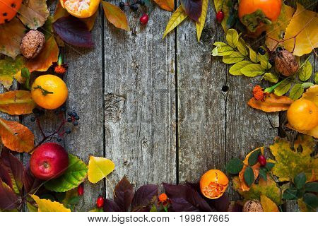 Autumn Background With Colored Leaves On Wooden Rustic Board With Copy Space