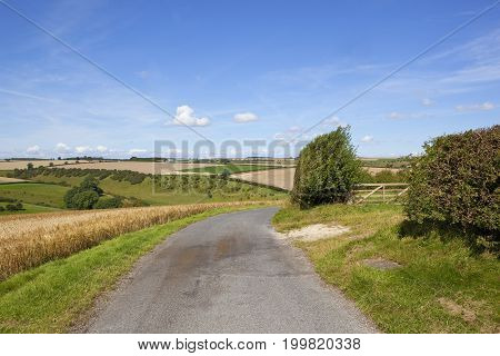 Curving Rural Road