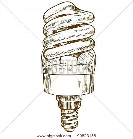 Vector antique engraving illustration of lightbulb lamp isolated on white background