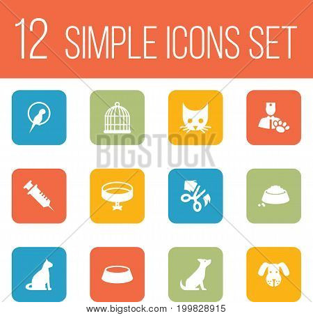 Collection Of Sitting, Birdcage, Scissor And Other Elements.  Set Of 12 Mammal Icons Set.