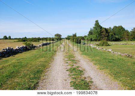 Beautiful country road in a plain swedish grassland at the swedish island Oland