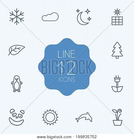Collection Of Fir Tree, Panda, Sun Elements.  Set Of 12 Natural Outline Icons Set.