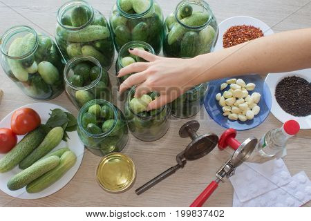 Step by step the flavors come together. Here a woman's hands are hard at work stuffing cucumbers and dill into a pickling jar as she prepares home-made dill pickles. cucumbers pickles