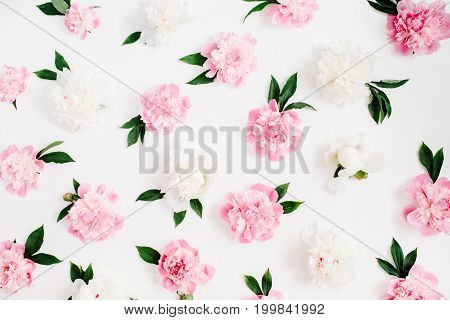 Flower pattern of pink and white peony flowers branches leaves and petals on white background. Flat lay top view. Peony flower texture.