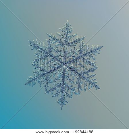 Real snowflake macro photo: very large snow crystal of fernlike dendrite type with fine hexagonal symmetry, complex elegant shape, six long, ornate arms with lots of side branches and small details.