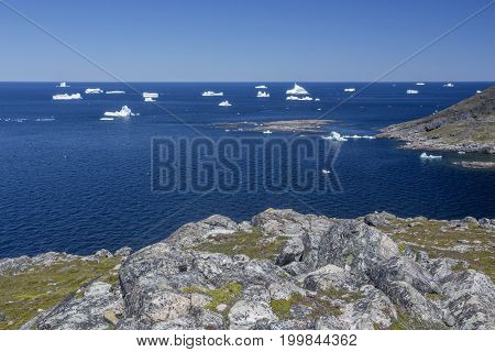 icebergs at Fogo Island, Newfoundland; view from Brimstone Head