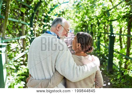 Happy embracing seniors walking along tree alley on sunny day