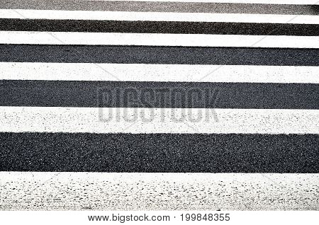 pedestrian stripes close up in front of