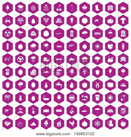 100 fruit icons set in violet hexagon isolated vector illustration