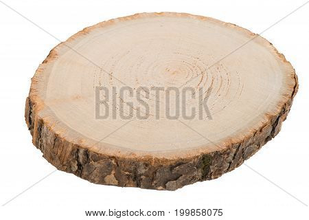 Wood log slice cutted tree trunk isolated on white.