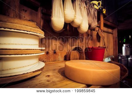 traditional cheesemaking - detail shot of a of cheese and curd.