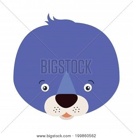 white background with colorful caricature face seal cute animal vector illustration